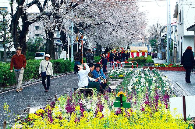 東原桜並木と花壇