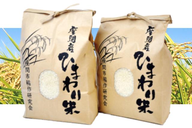 座間産ひまわり米